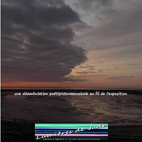 """exposition """"sous les misottes, la plage"""""""