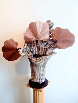 souche florale