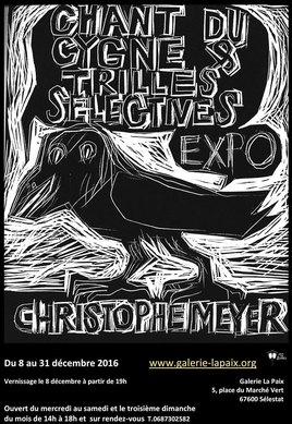 """Exposition """"Chant du cygne et trilles sélectives"""" proposé par Christophe meyer"""