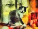 clotis