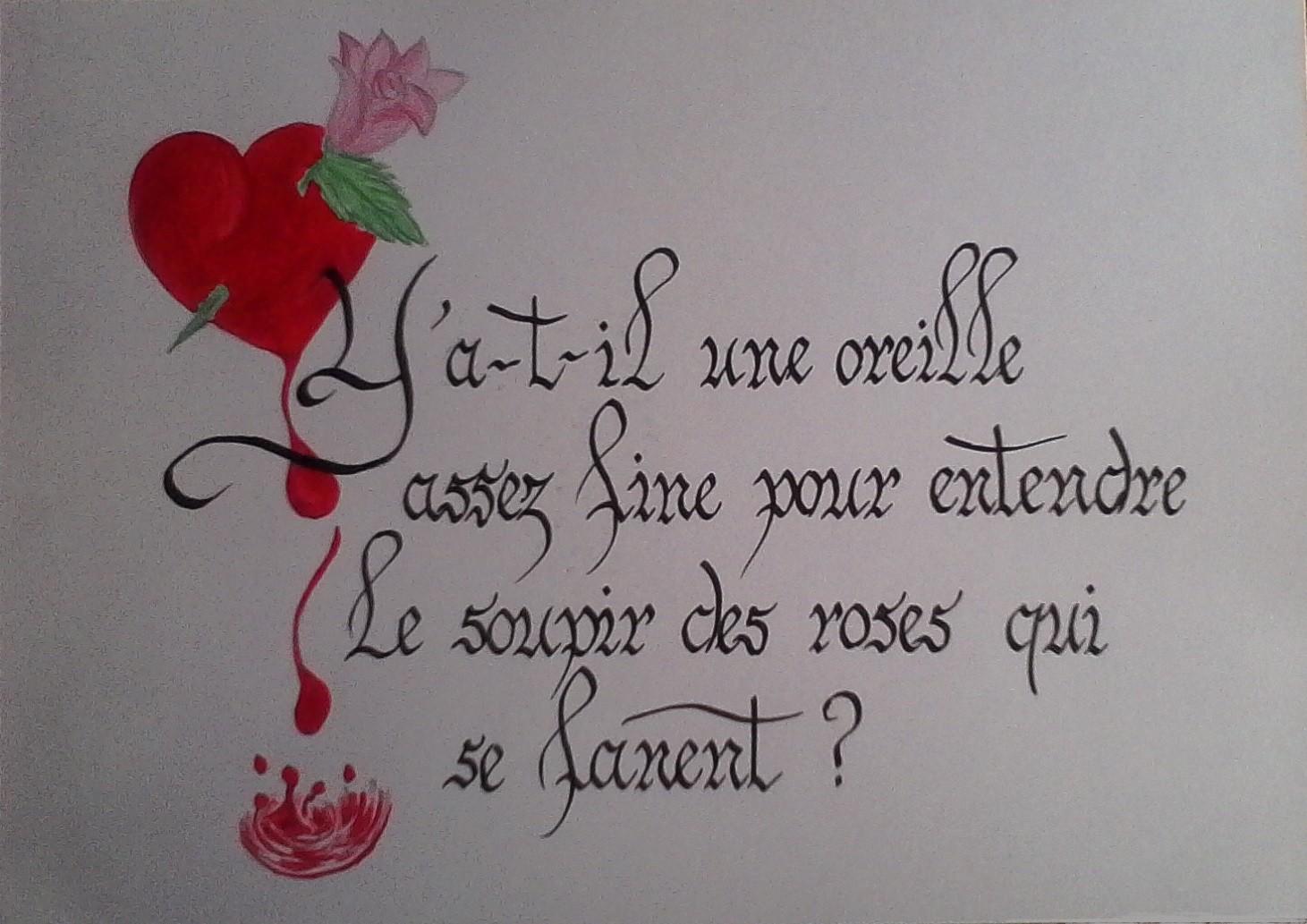 le soupir des roses