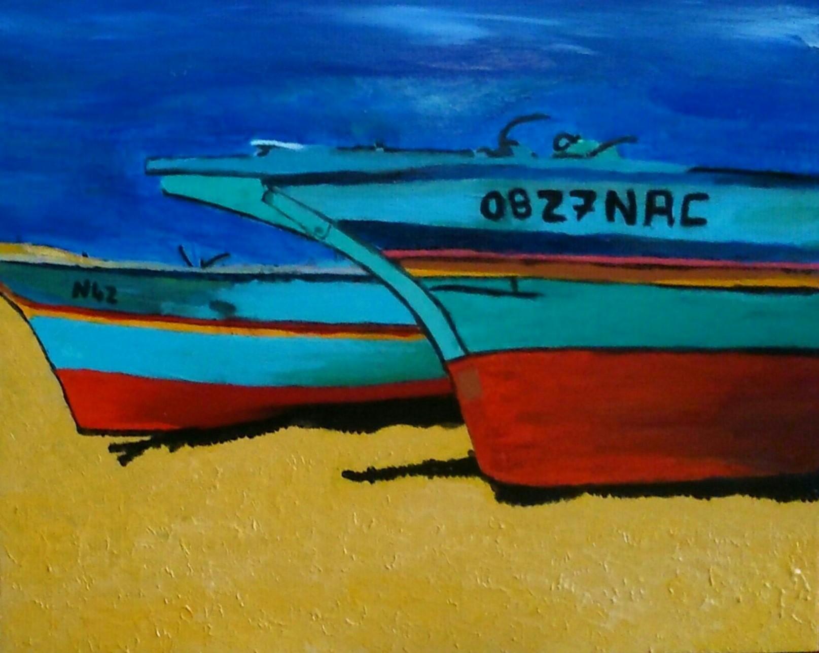 Barcasses colorées