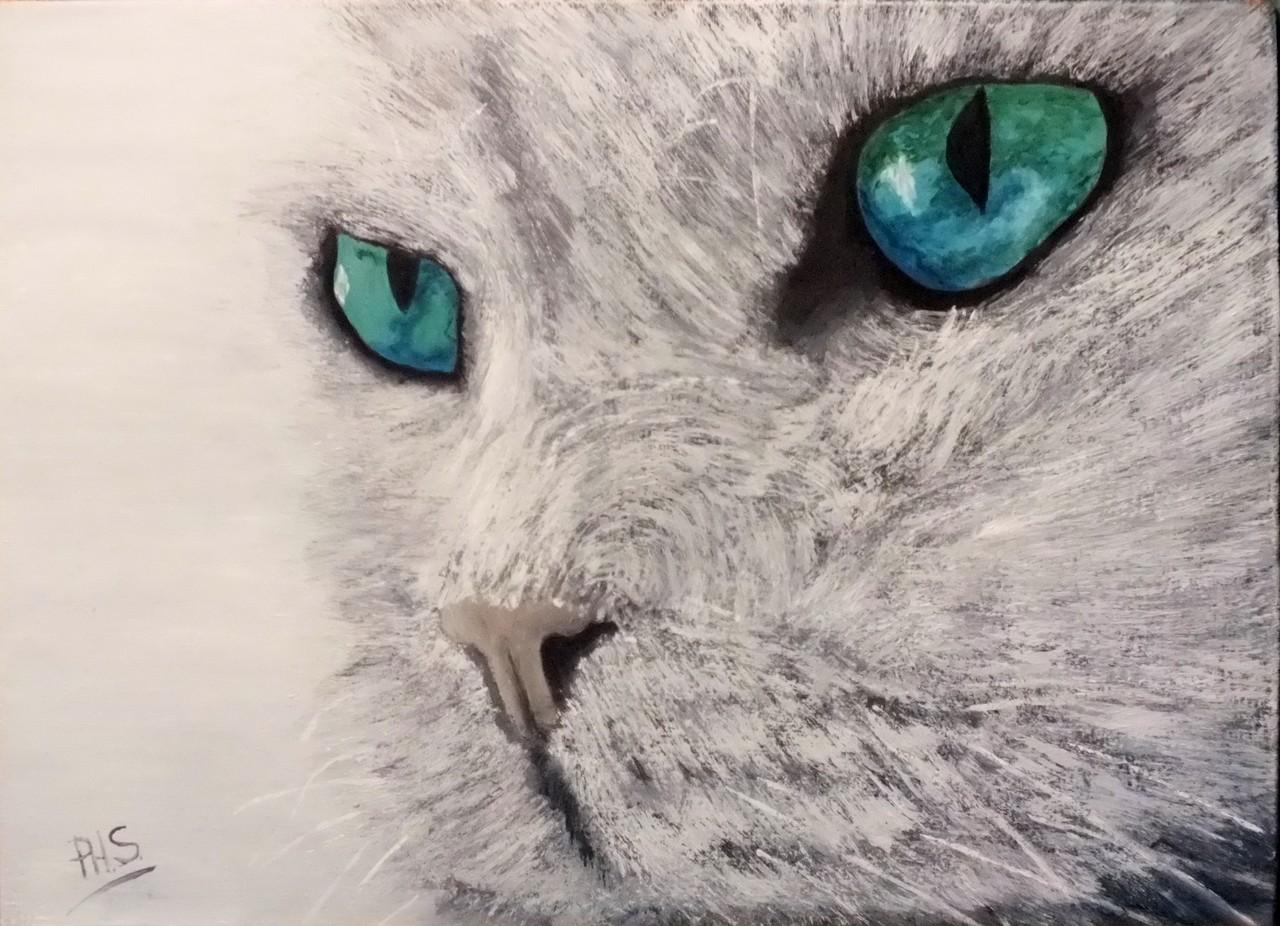 Chat aux yeux bleus-verts