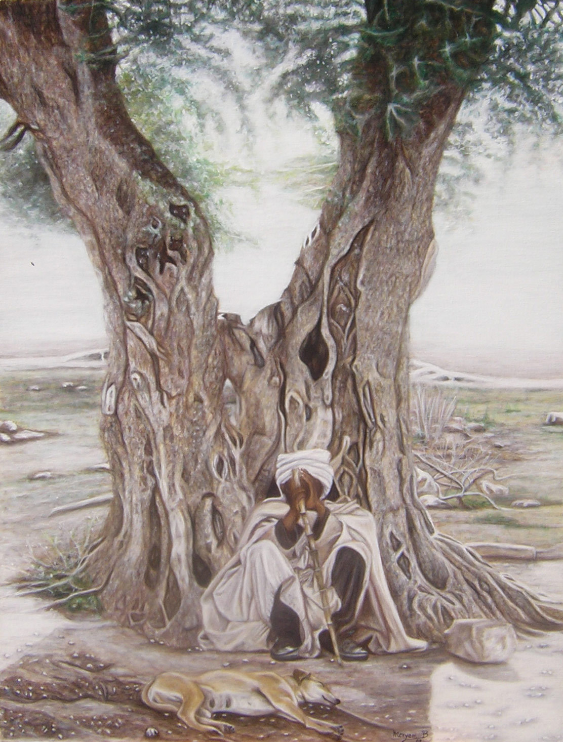 Peinture sous l ombre de l olivier - Psylle de l olivier ...