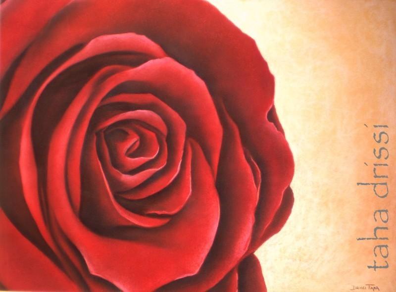 rose ou rouge?