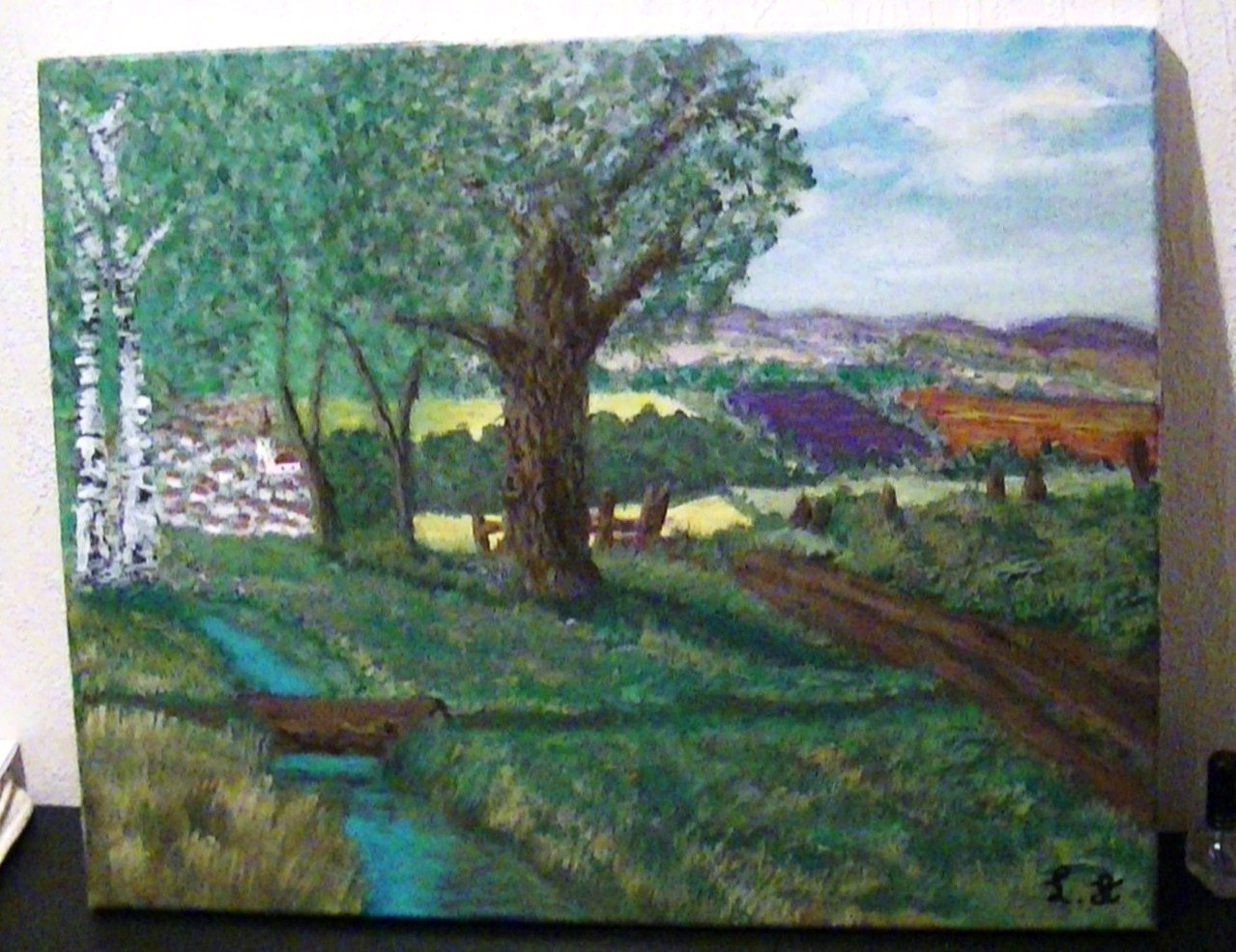 paysage vers le village