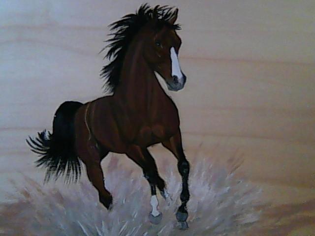 Peinture cheval au galop - Comment dessiner un cheval au galop ...