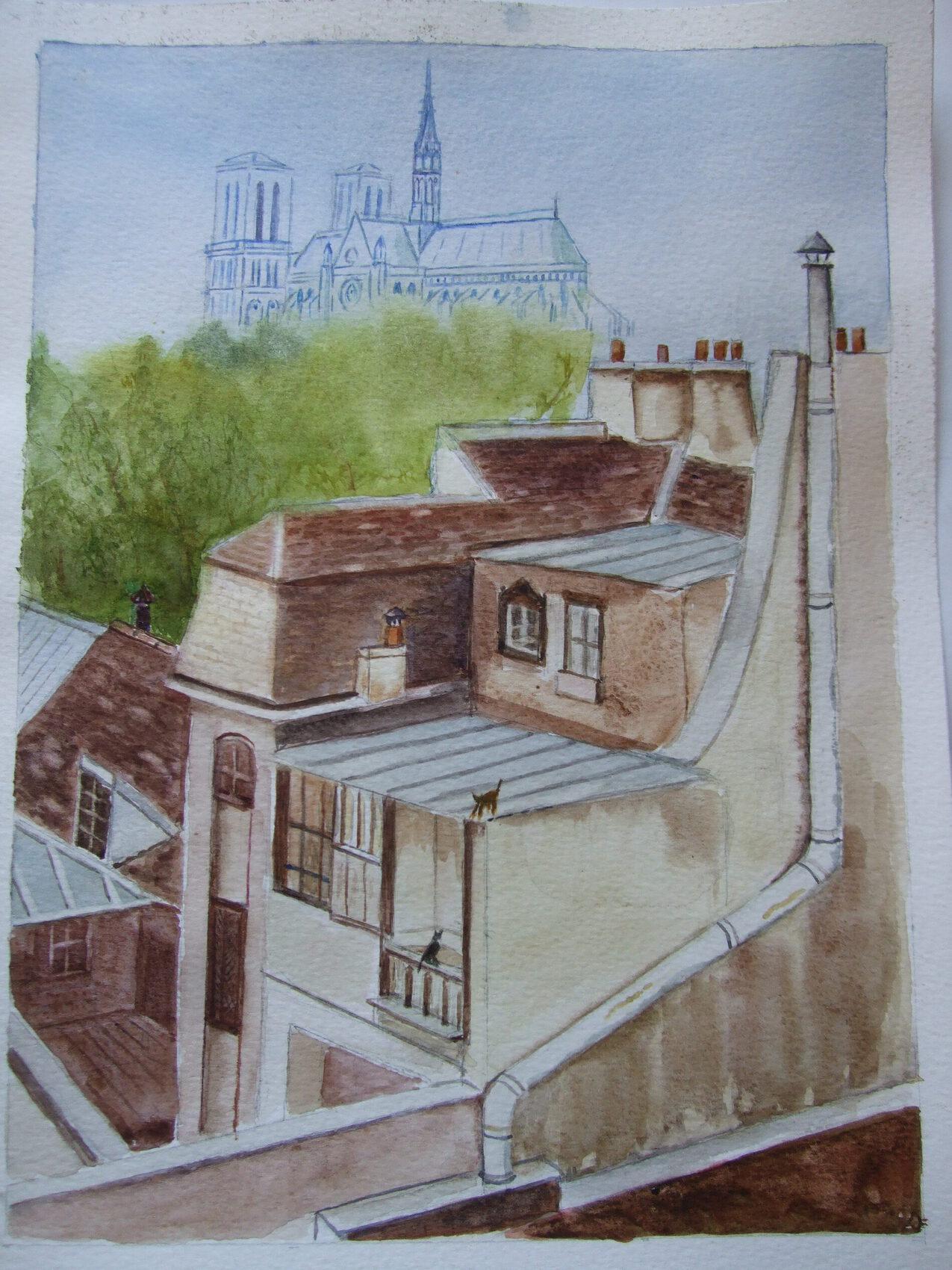 Notre Dame et les vieux toits de Paris