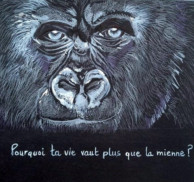 La protection animale, c'est notre affaire à tous!
