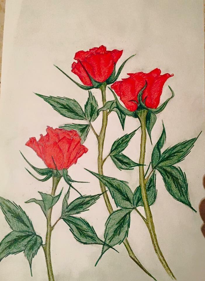 Dessin Bouquet De Roses Pour La St Valentin