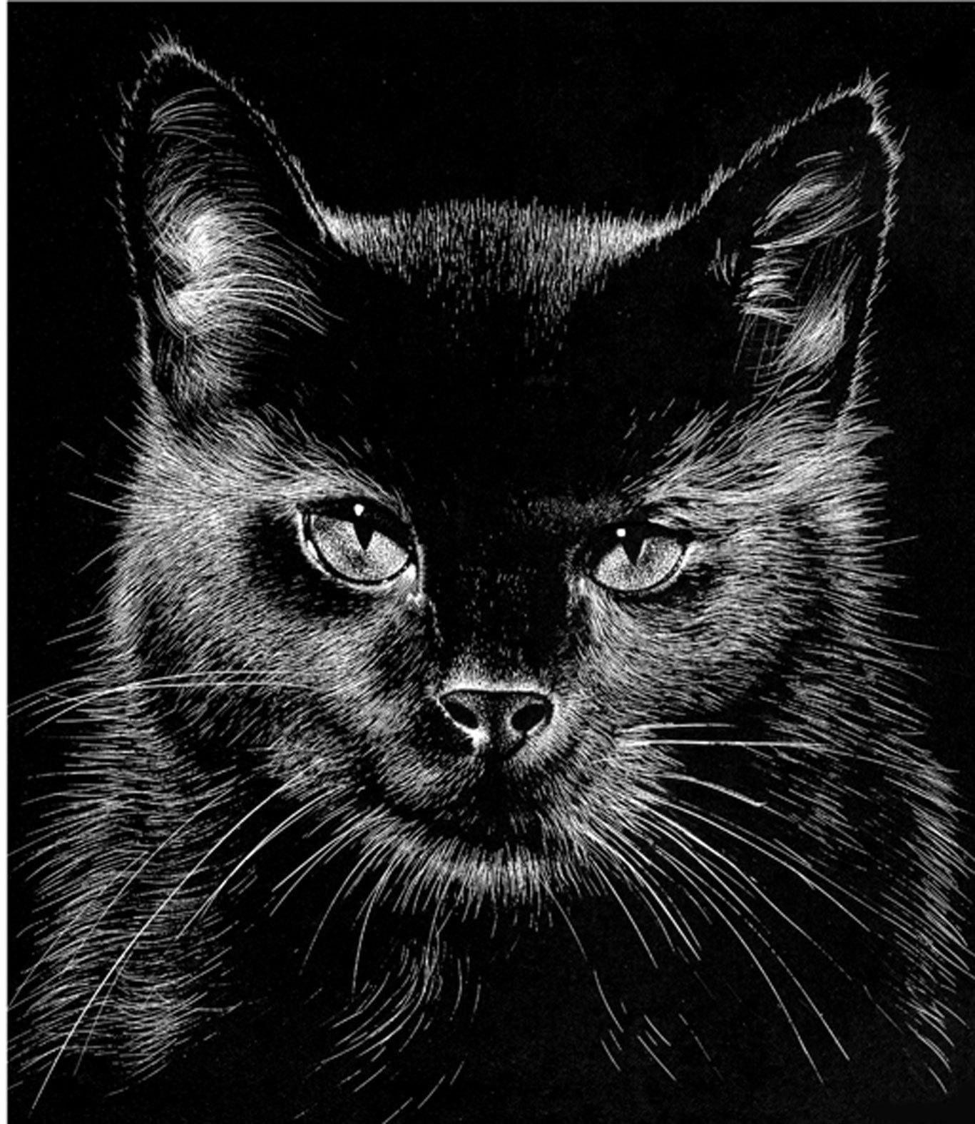peinture le chat noir. Black Bedroom Furniture Sets. Home Design Ideas