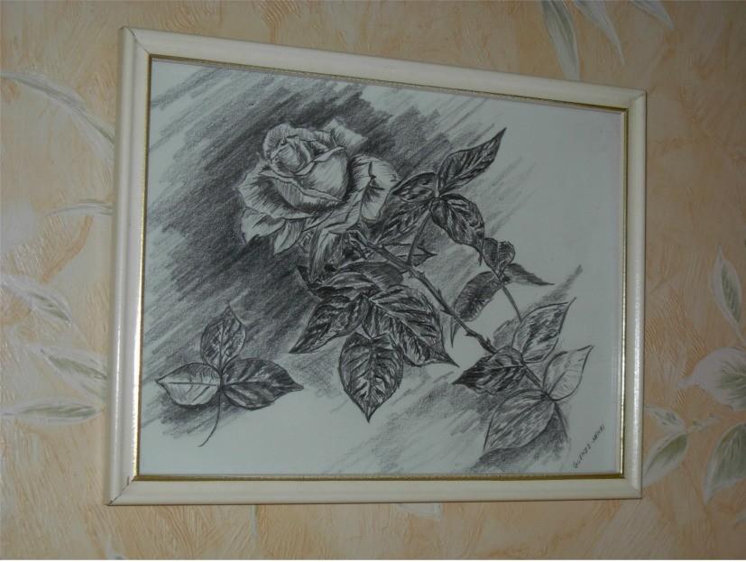 peinture dessin d 39 une rose. Black Bedroom Furniture Sets. Home Design Ideas