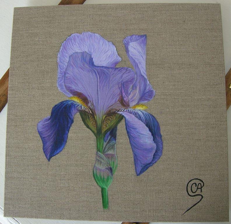 Iris mauve - Peinture acrylique