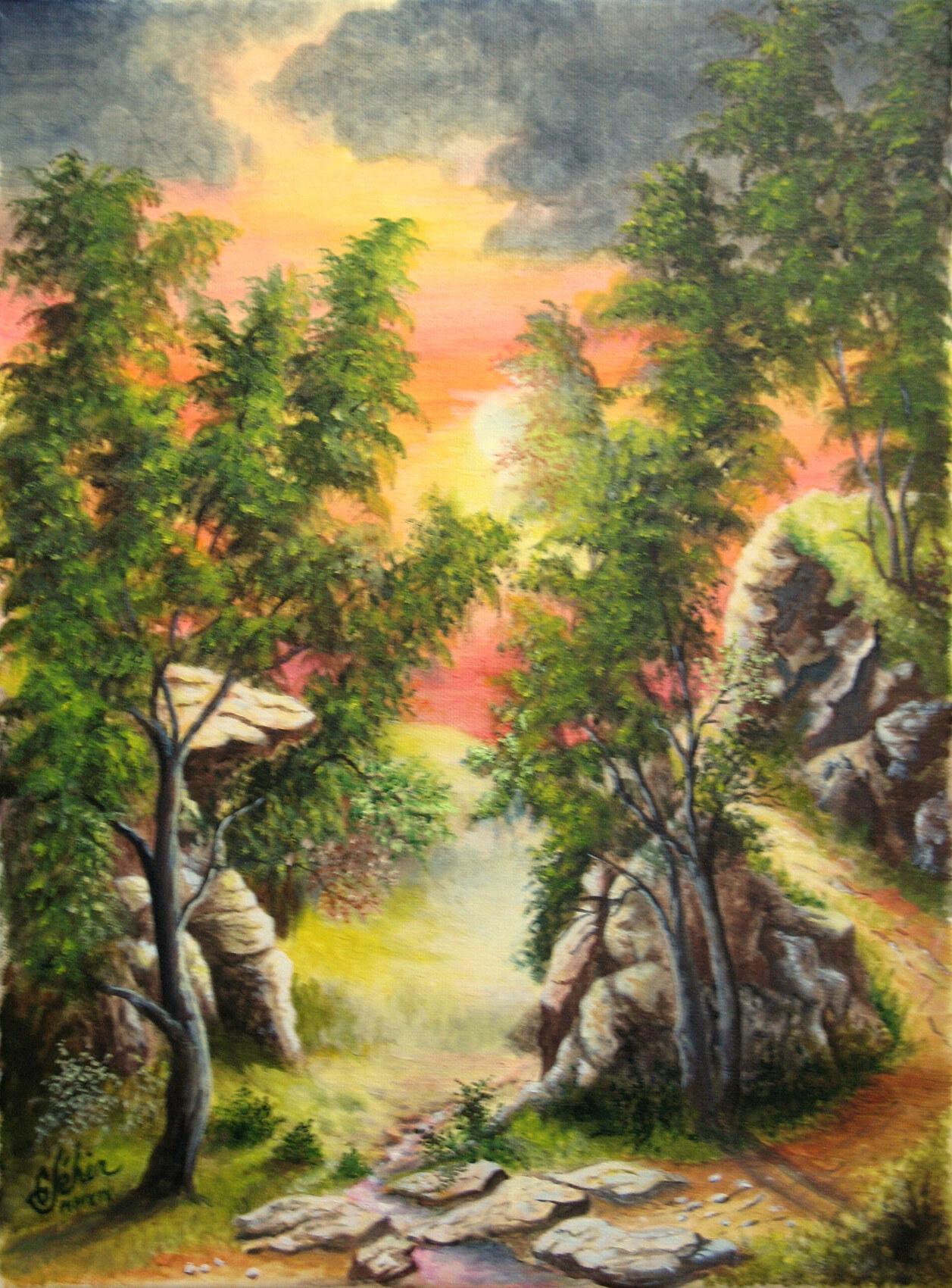 La chemin des roches.