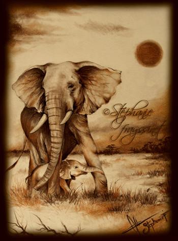 Dessin el phants d 39 afrique - Dessins d elephants ...