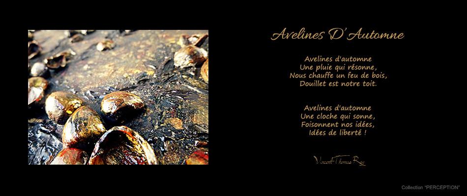 """Poème """"Avelines D'Automne"""" Collection """"PERCEPTION"""""""