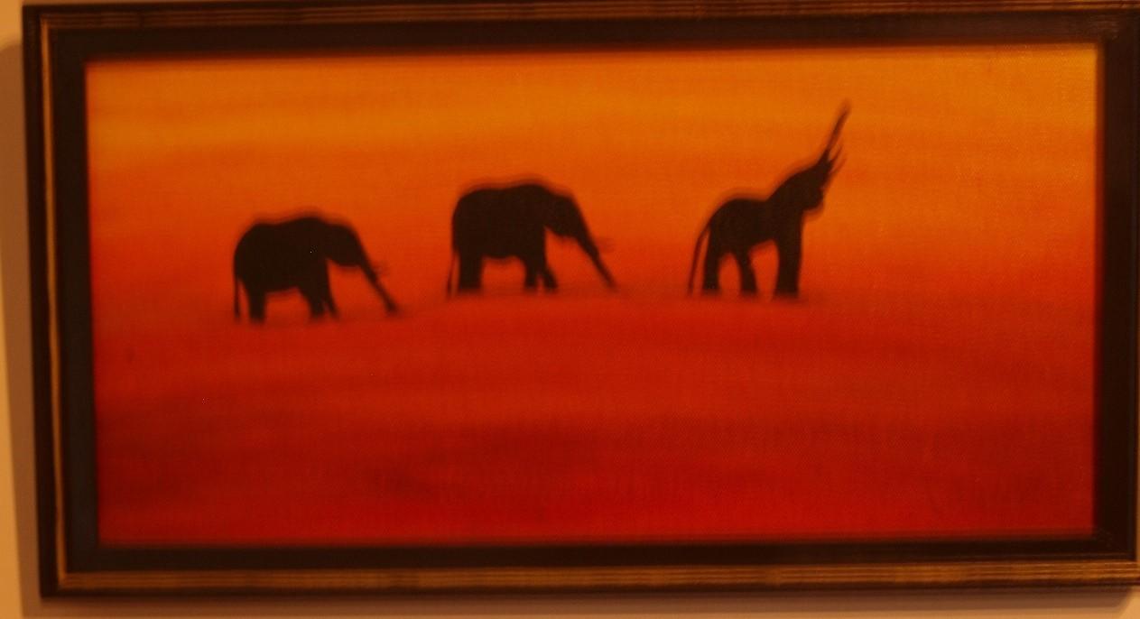 ballade d'éléphants