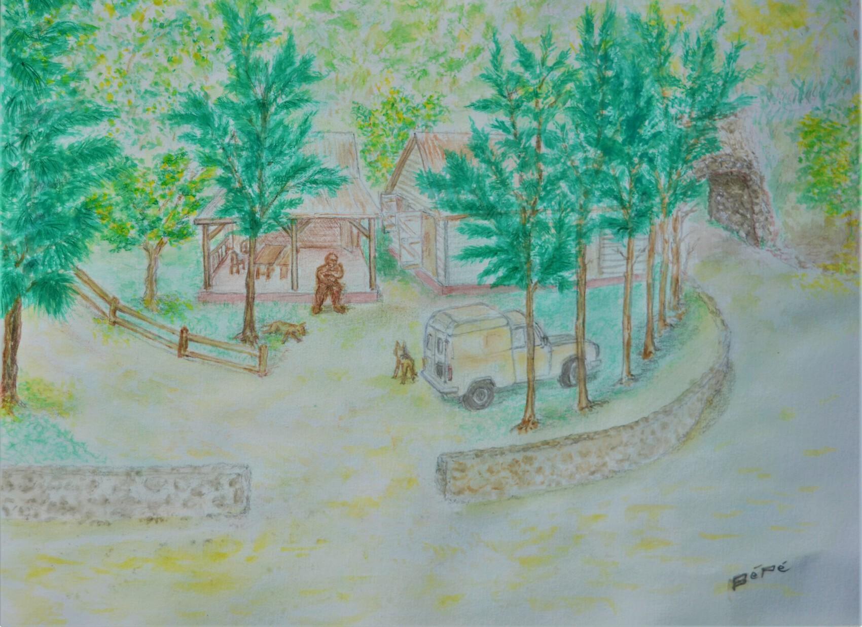 la route forestière du Maïdo