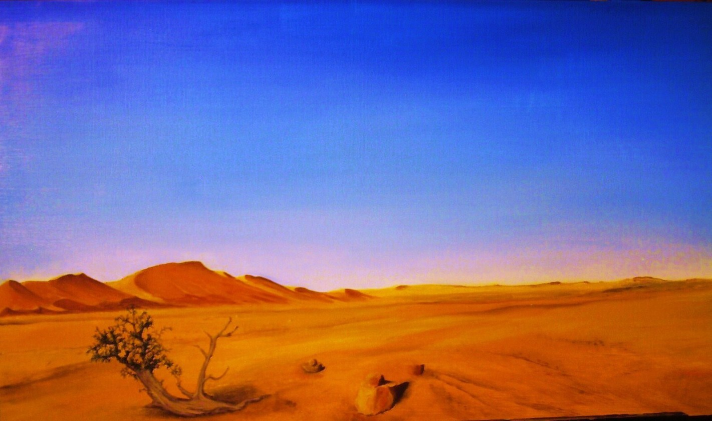paysage du maghreb