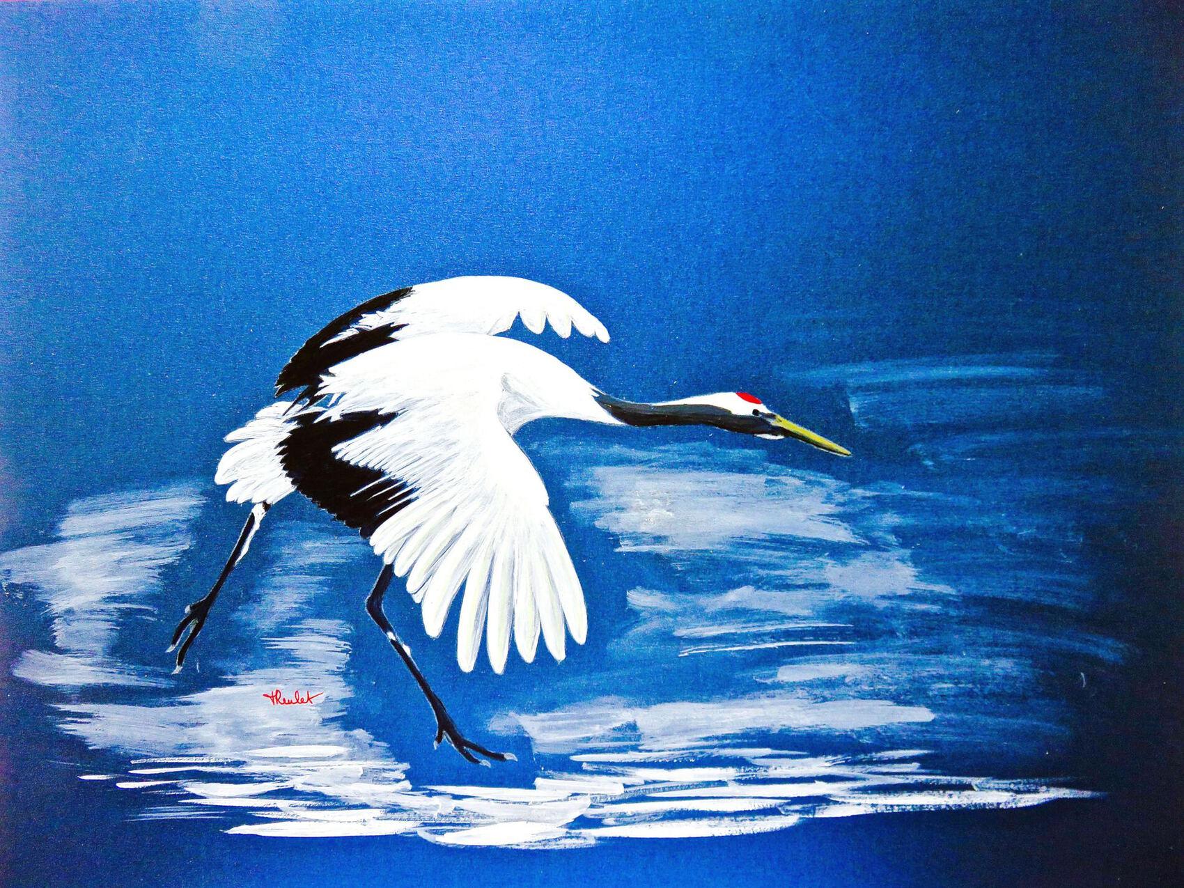 La grue du Japon (Grus japonensis) / Painting A red-crowned crane landing