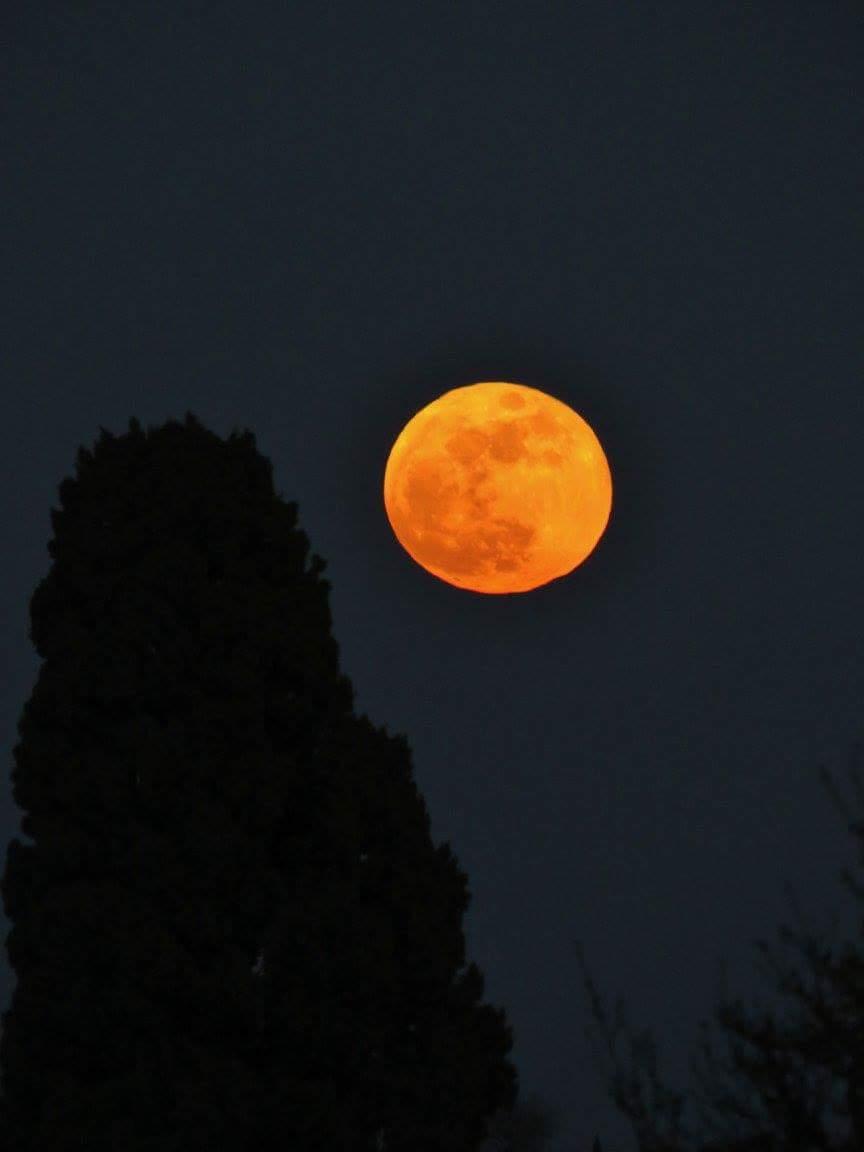 Super lune bleue de sang 2