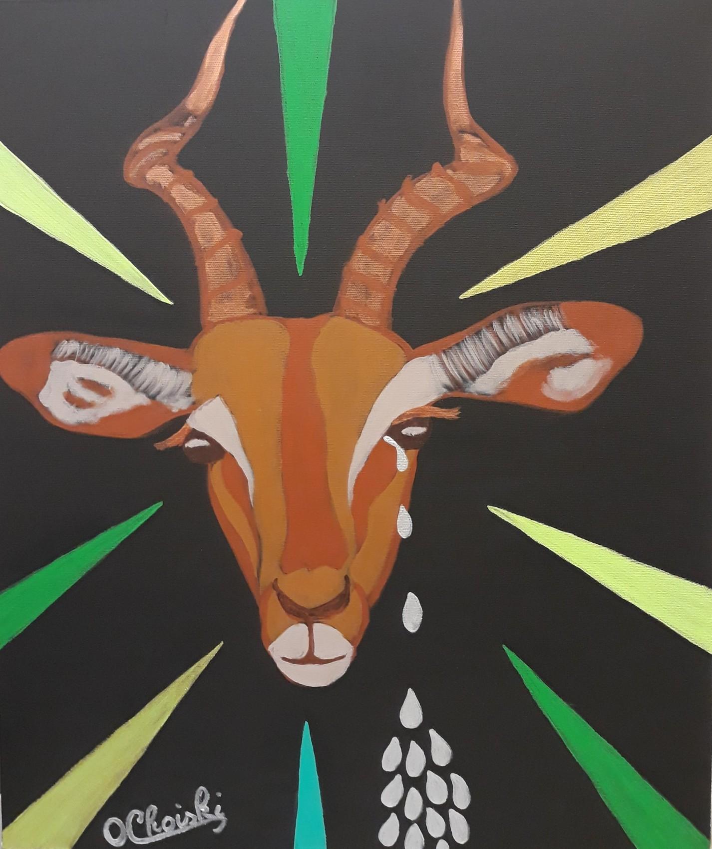 Impalas do not cry