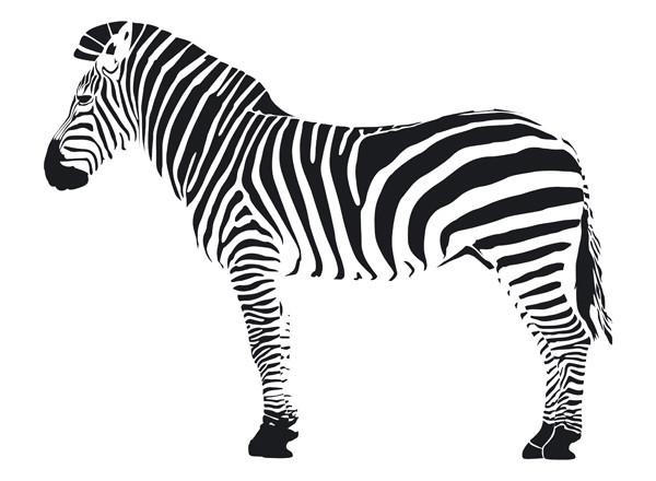 Dessin z bre - Dessin zebre facile ...