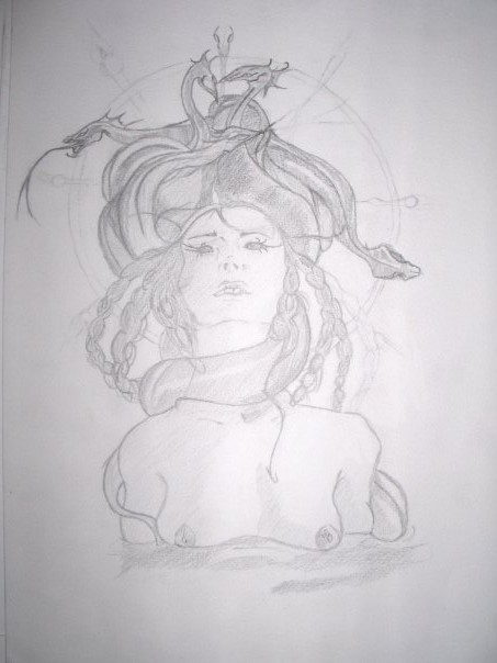 MEDUSE (reproduction)