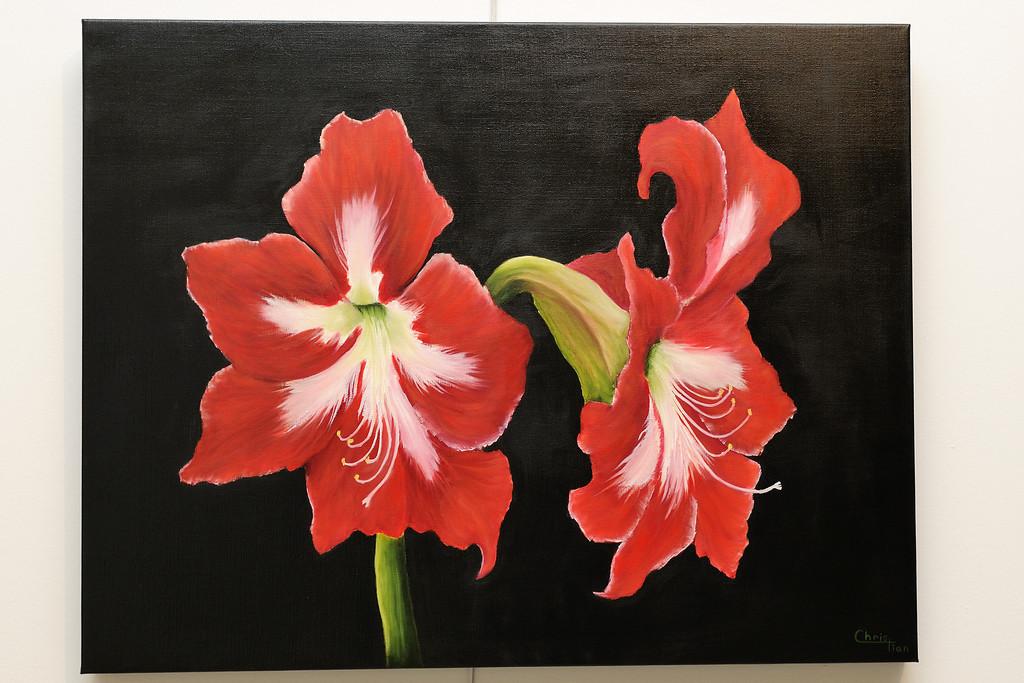 Peinture amaryllis for Amaryllis vente