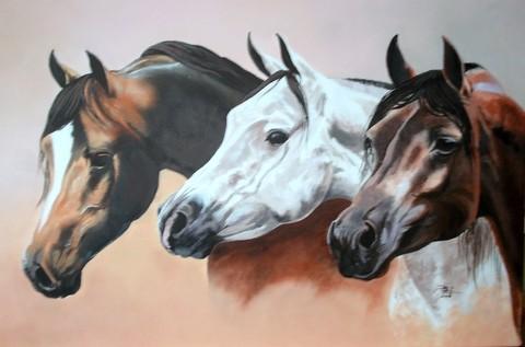 cheval arabe en peinture