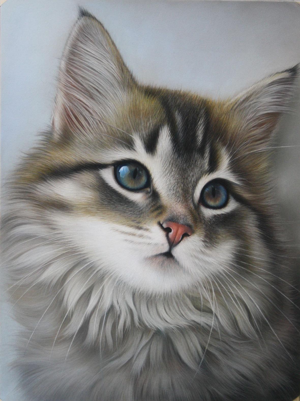 peinture myra le chat aux yeux bleu. Black Bedroom Furniture Sets. Home Design Ideas