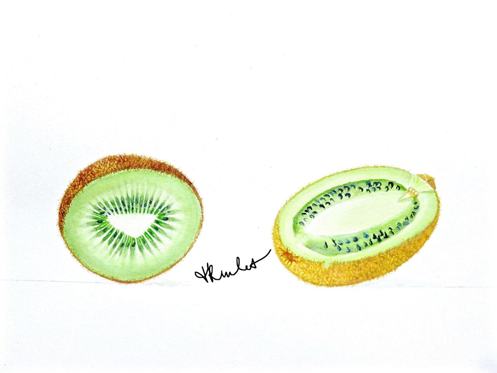 Le kiwi  coupé / Painting A cut kiwi