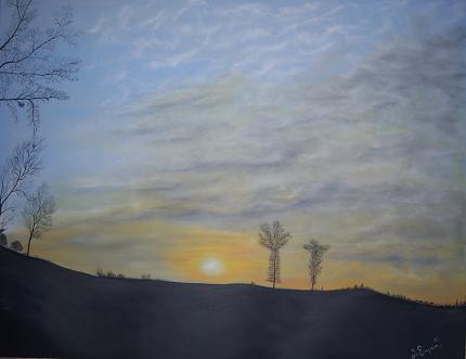 arbre en Creuse - 2010