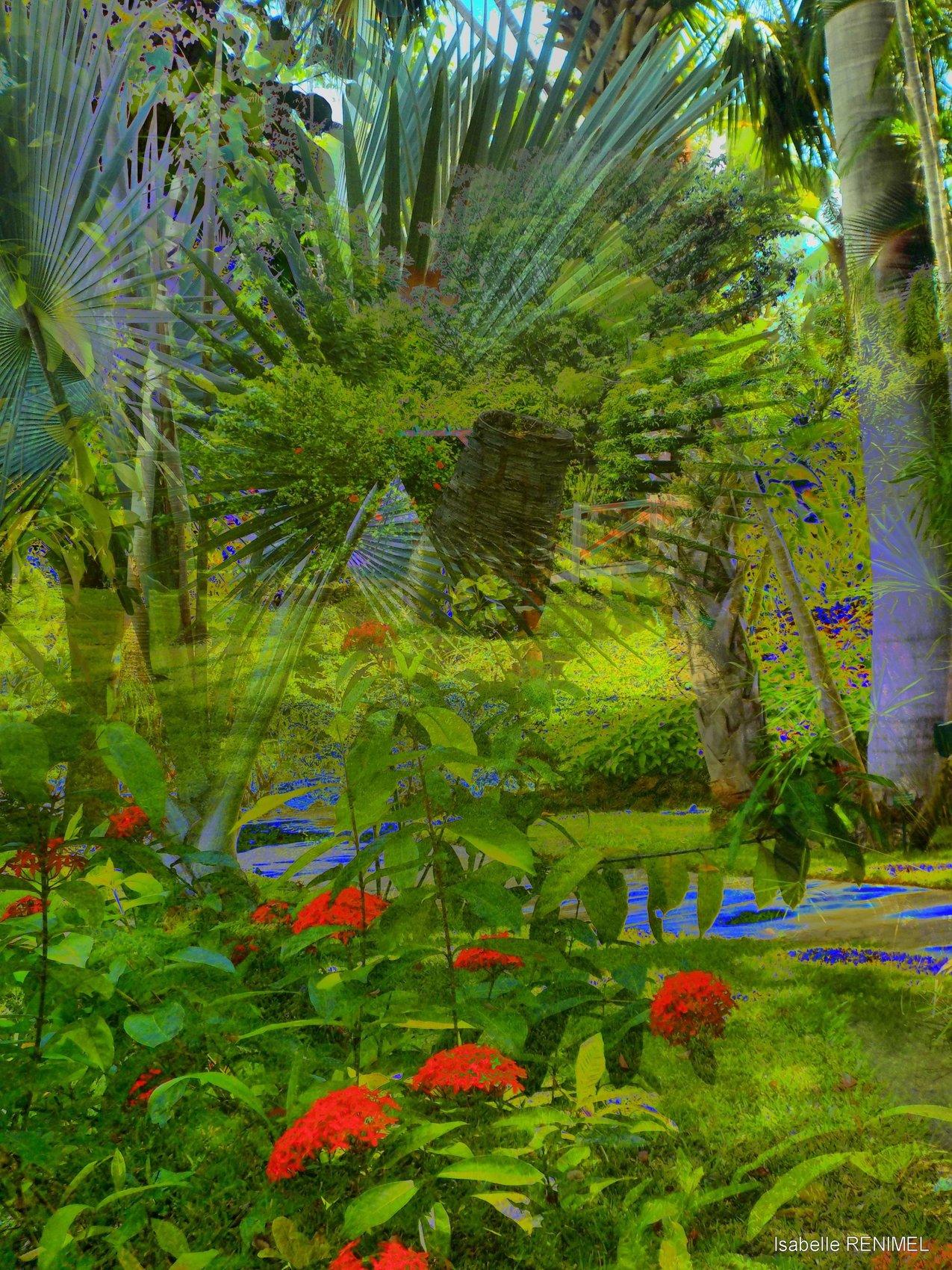 Photo jardin d 39 eden for Jardin d eden meyzieu