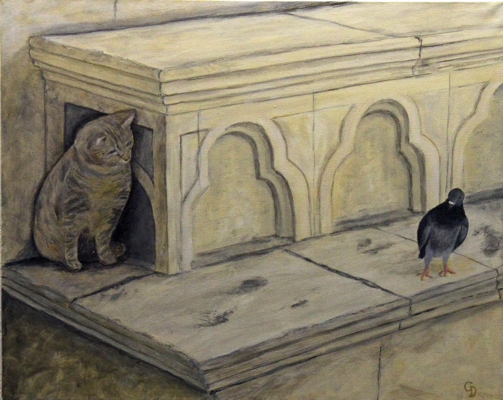 289 - Jeune chat et vieux pigeon, mefiance reciproque.