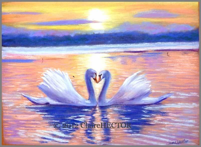 D coration couleur pastel peinture pau 1211 paul marius rennes paul marius homme paul for Peinture couleur pastel mulhouse