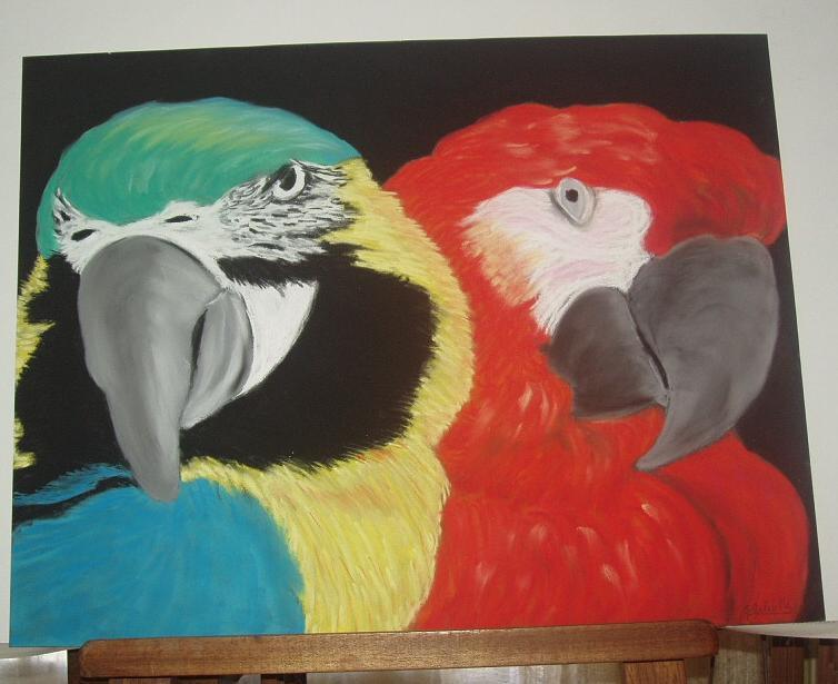 couple de perroquet