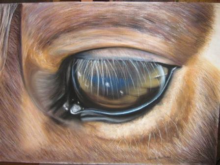 oeil de cheval II