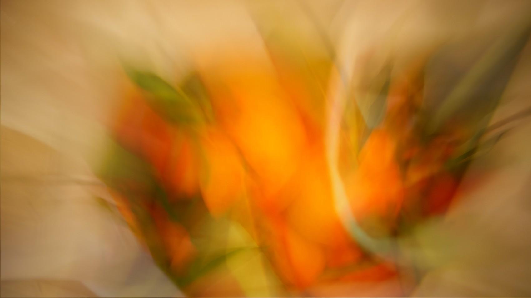 Les mandarines