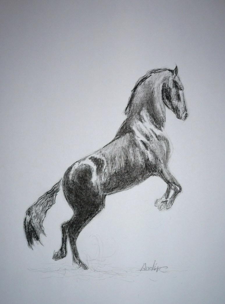Dessin cheval noir - Cheval a imprimer noir et blanc ...