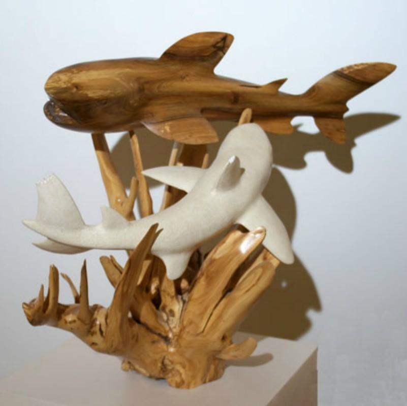 Requin et dauphin