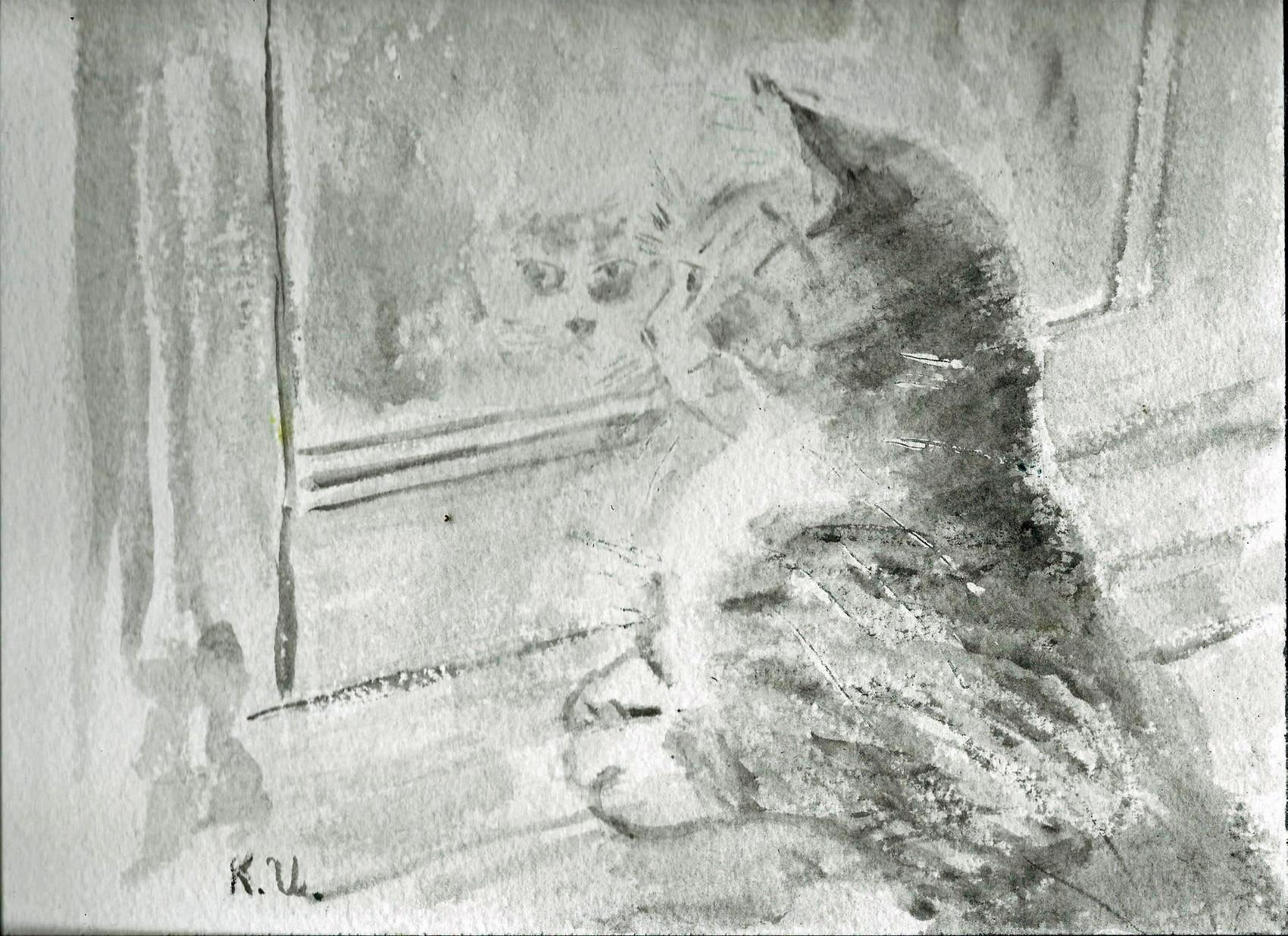 Petit chat à la fenêtre