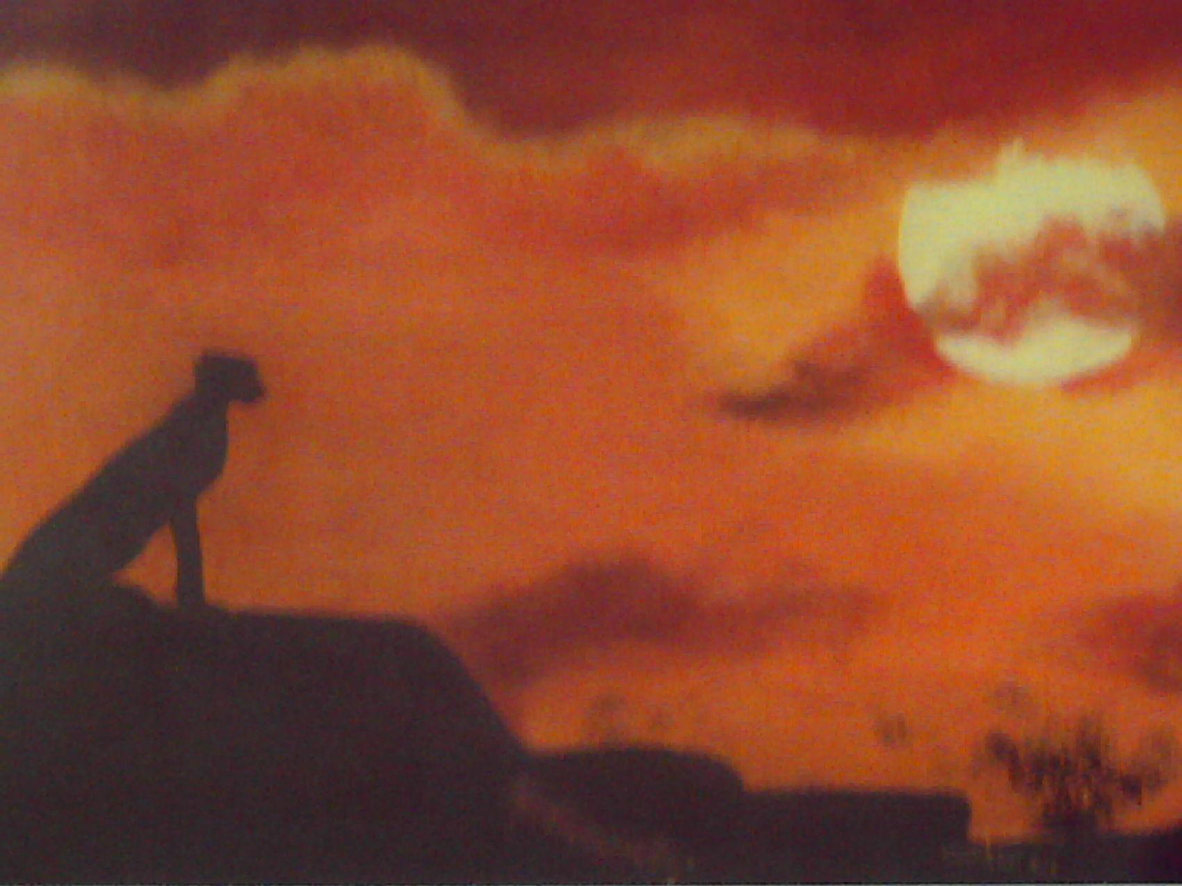 Dessin coucher de soleil africain - Coucher de soleil dessin ...