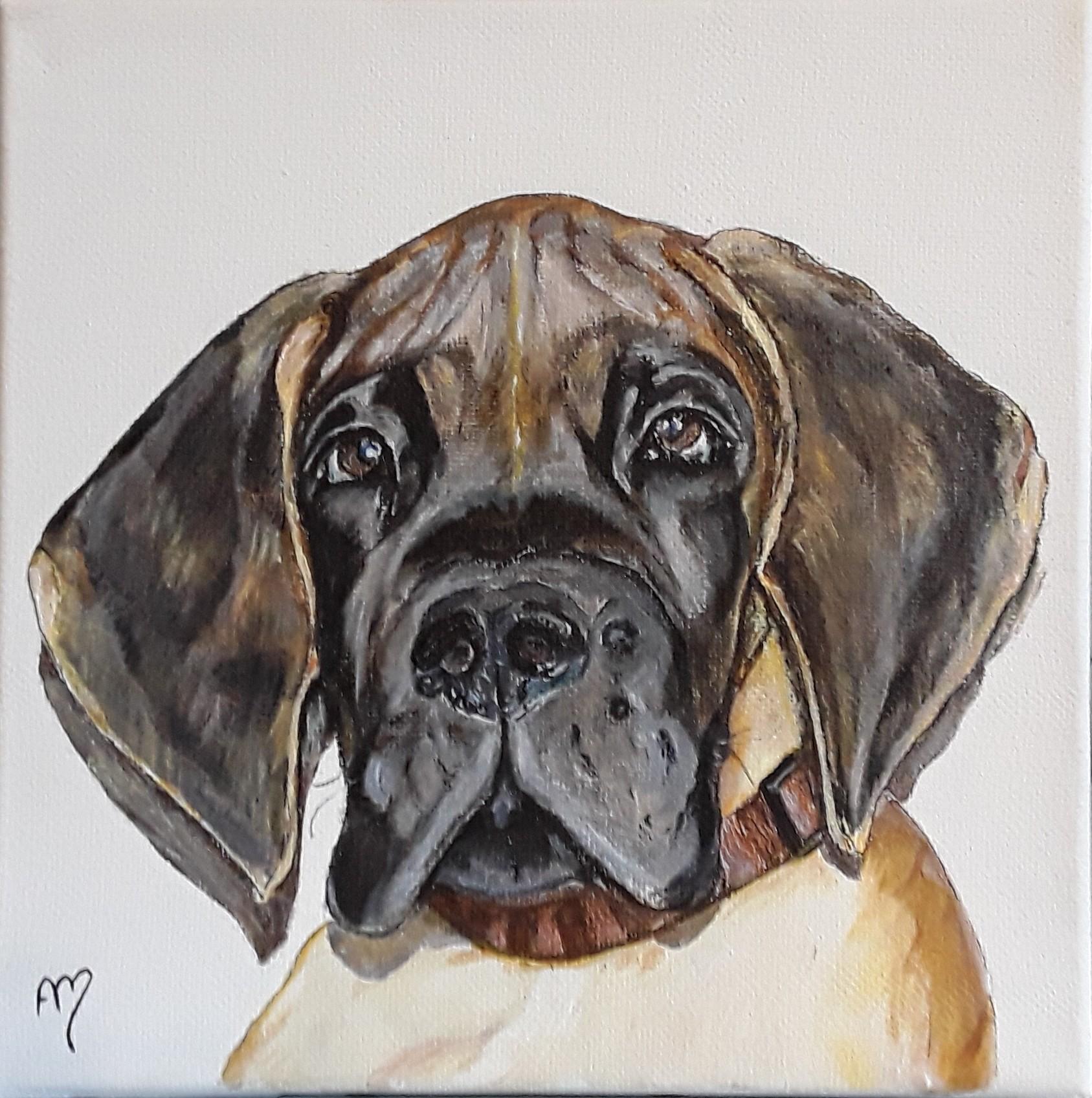 Le Joyaux d'Allythelia  ( Dogue allemand, à 3 mois)