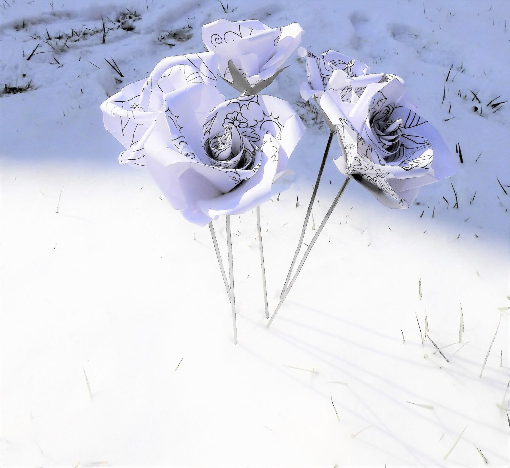 roses des neiges en origami