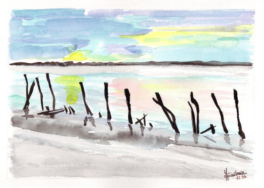 Camargue étangs