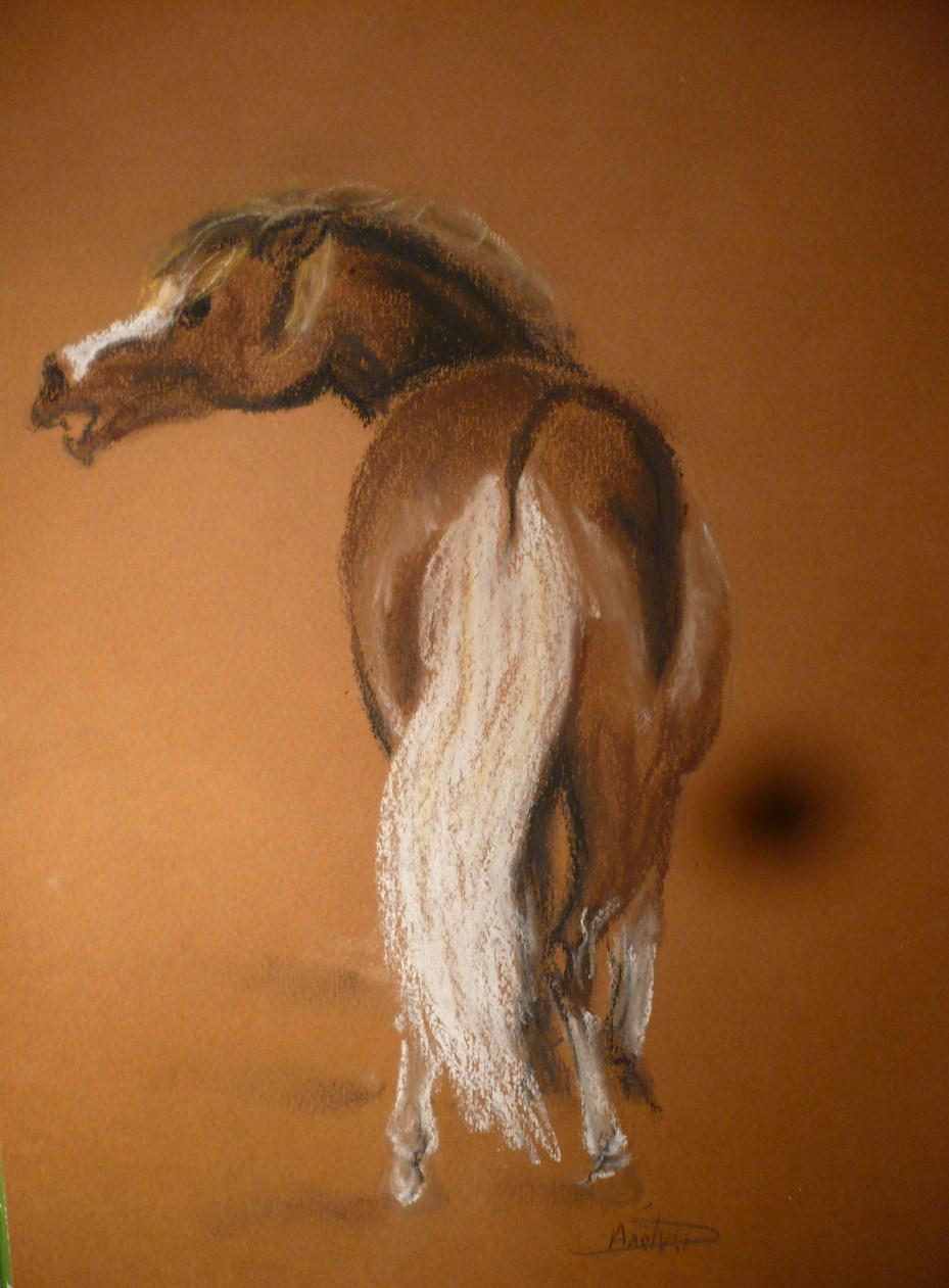Dessin cheval de dos - Desin de cheval ...