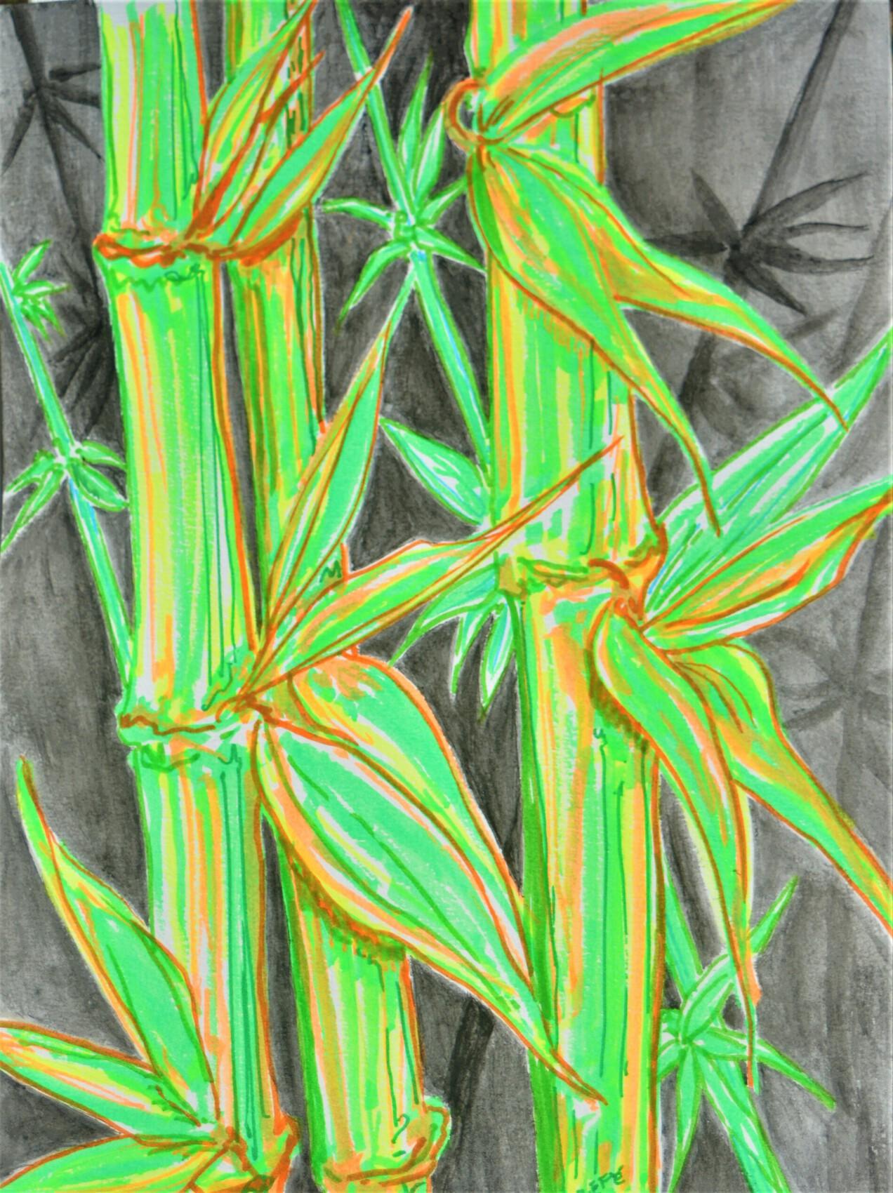 bambouseraie de Petite France