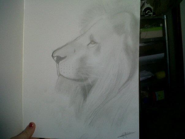 Dessin Lion De Profil