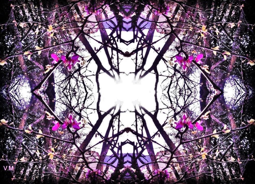 Au coeur des arbres par Vanessa Martinez 2017